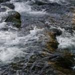 Ablagerungen und Verengungen behindern den Fluß